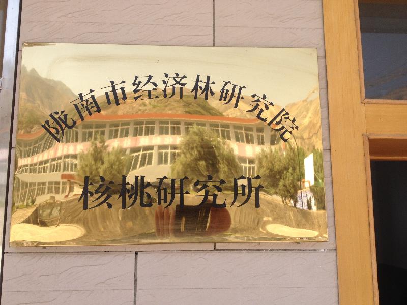 陇南市经济林研究院核桃研究所